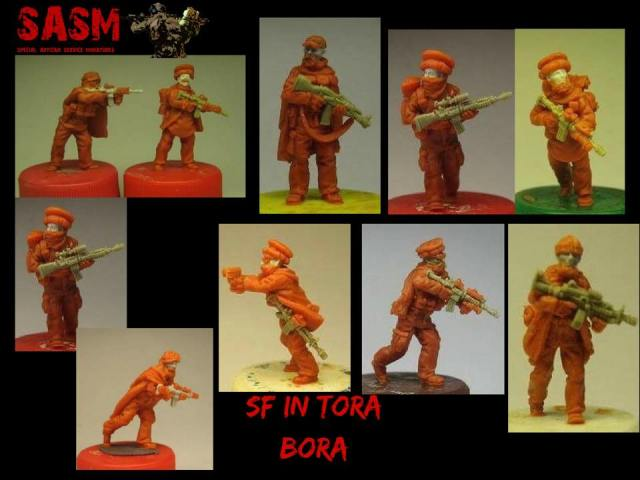 Upcomming -October -Tora Bora